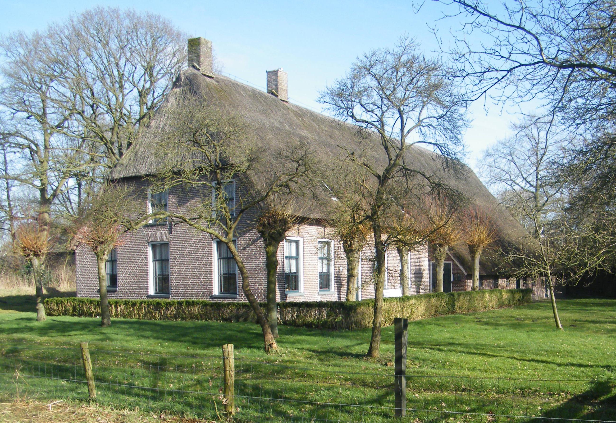 een oude boerderij van lichte bakstenen met rietendak, omringd door een lage haag. Rond de boerderij een grasveld met bomen.