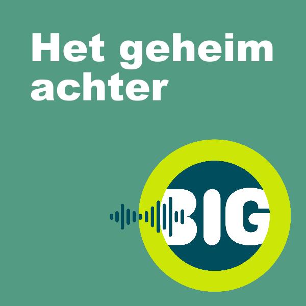 een button met de tekst: Het geheim achter, en daarbij het beeldmerk van BiG
